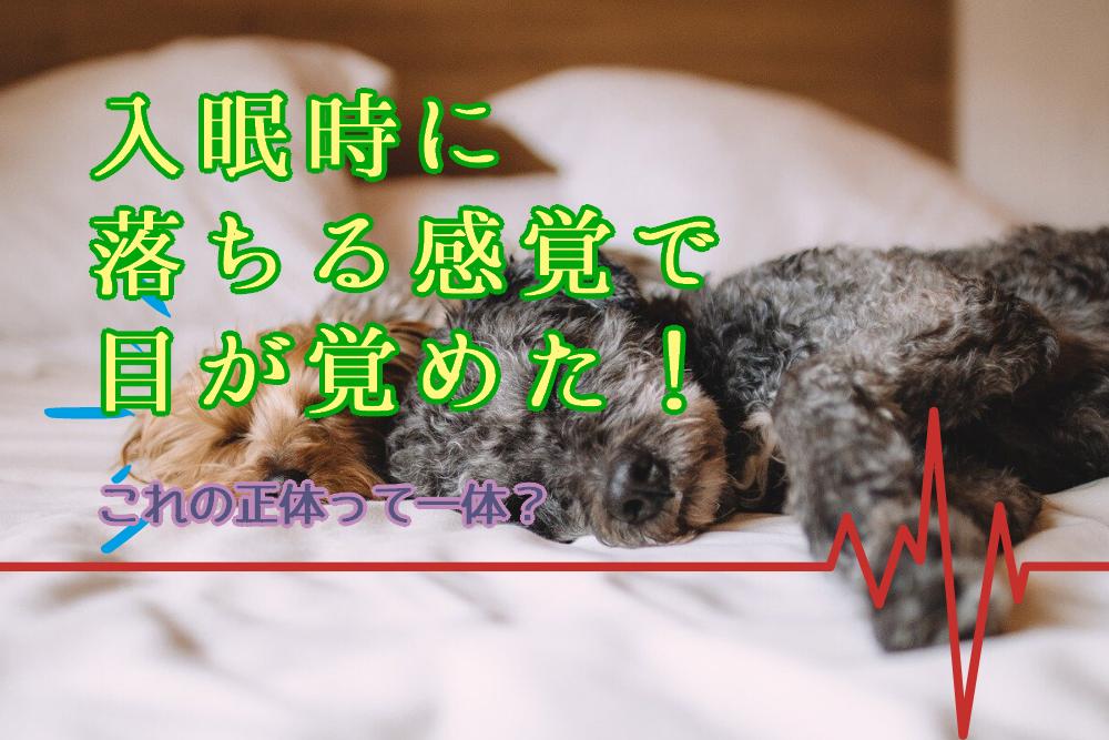 ジャーキング_タイトル