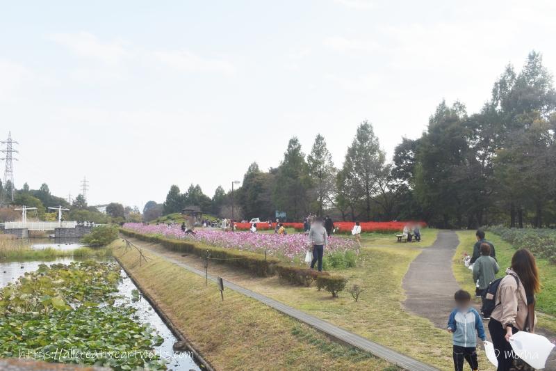 花の丘_基本情報
